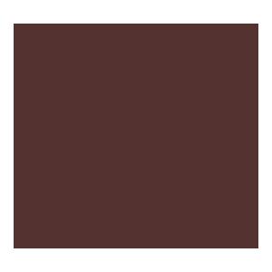 enjoy authentic joy logo round